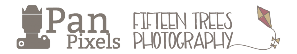 Pan Pixels & FTP Logo